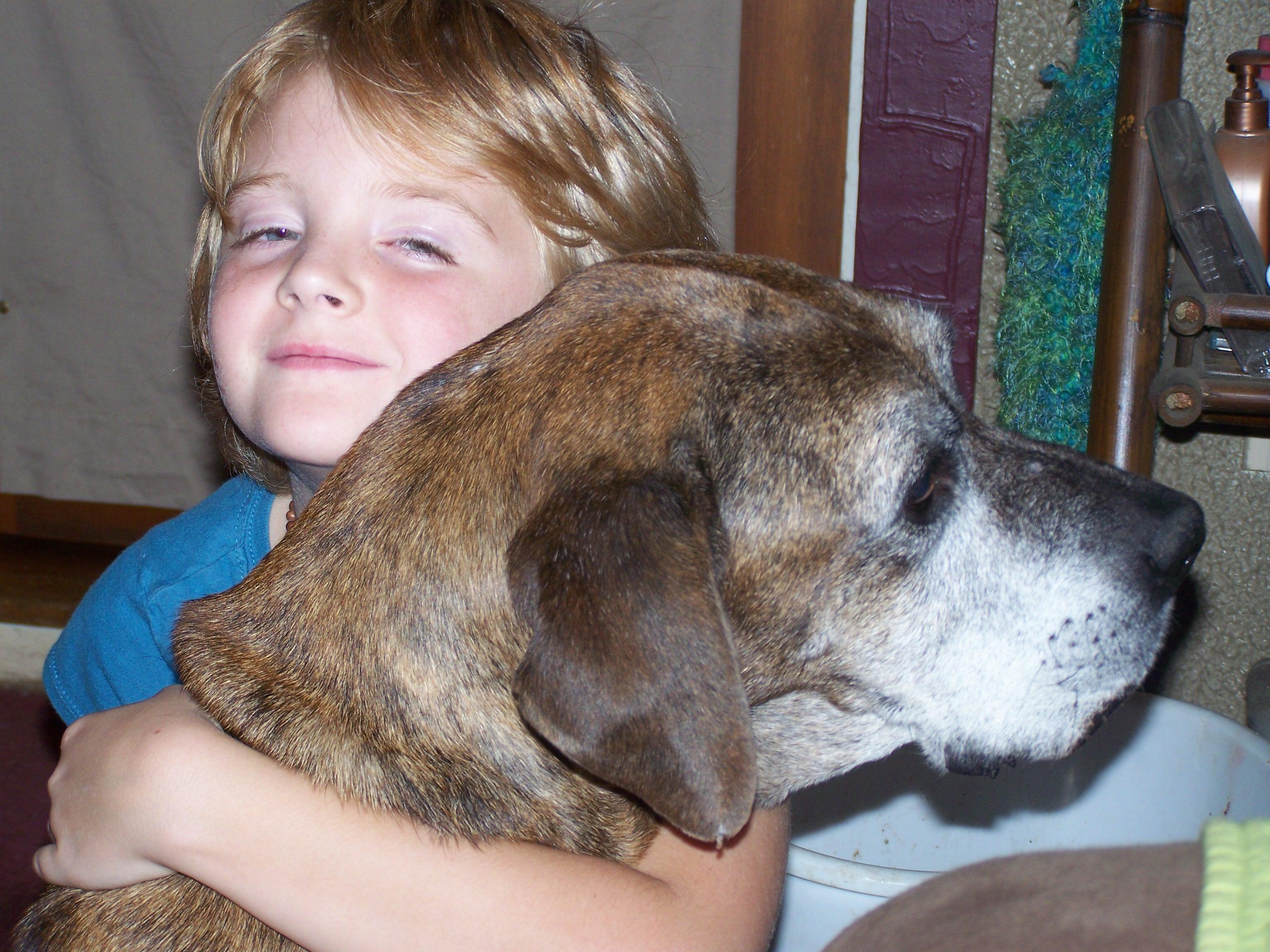 Brindle gets a huge hug from little Tristan