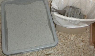 Frequently emptying the temporary used litter storage will also help cut down on odors.