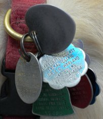 If an outdated rabies vaccination tag shows to law enforcement officers, disaster could result.