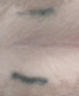 Another example of a spay tattoo. Notice that the surgical incision barely left a scar.