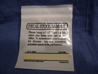 This zipperlock bag is excellent for bringing a tablespoon of stool or a urine sample.